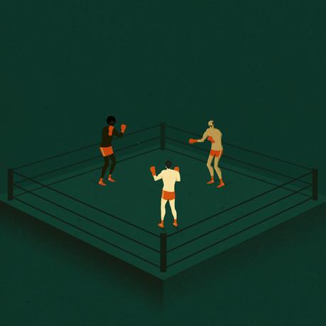 1X1_three_boxers.jpg