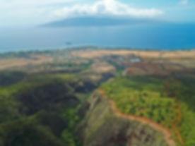 Beaches-Maui-Lahaina-from-Air-14.jpg