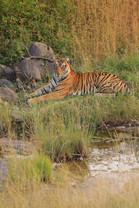 Kanwarjit Singh Boparai-1234.jpg