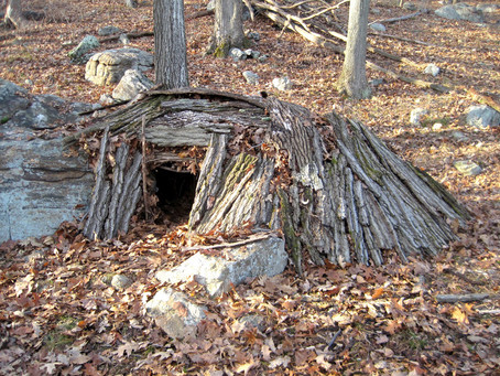 Building a Debris Shelter in the Woods