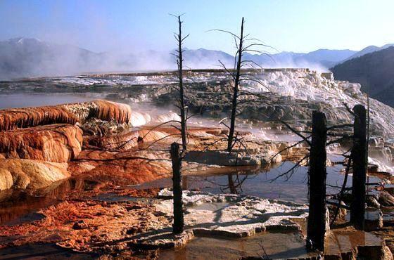 Mammoth_Hot_Springs-Yellowstone