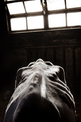 Foto: Tommaso Ausili. World Photo