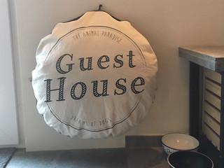 Somarelli Guesthouse animal paradise