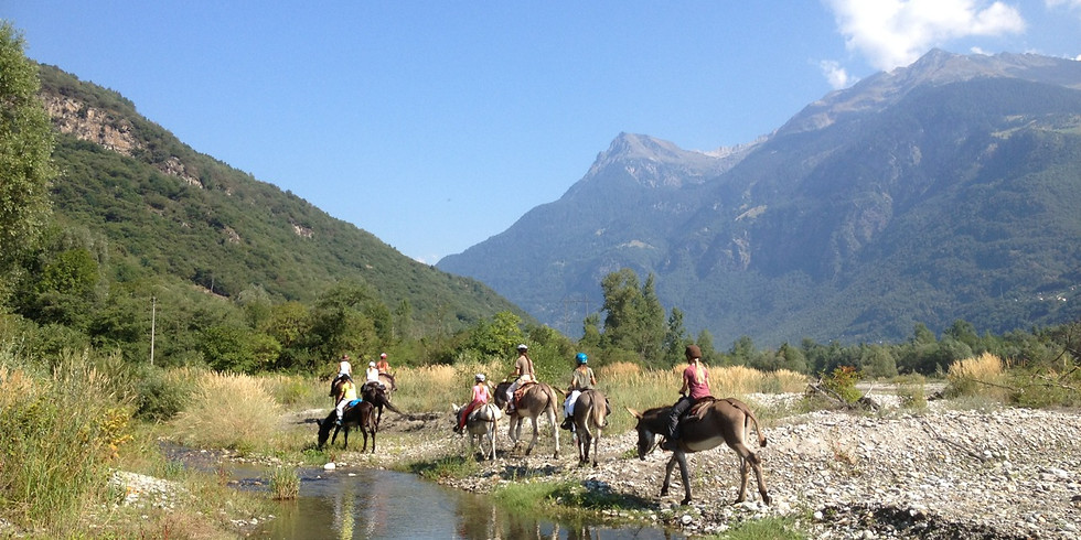 Corso d'equitazione: 4 giorni in sella! COMPLETO - ci sono ancora posti nel campo somarelliAmo con il WWF-Ticino