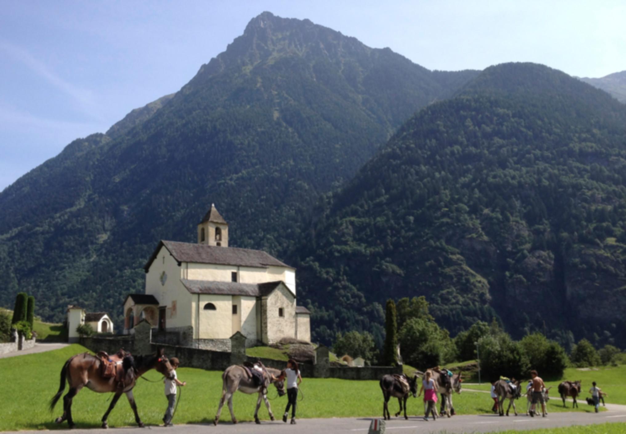 SOMARELLI Eseltrekking, Maultierreiten, Unterwegs mit Tieren, Ferien im Tessin, Eselreiten, Trekking con asini e muli