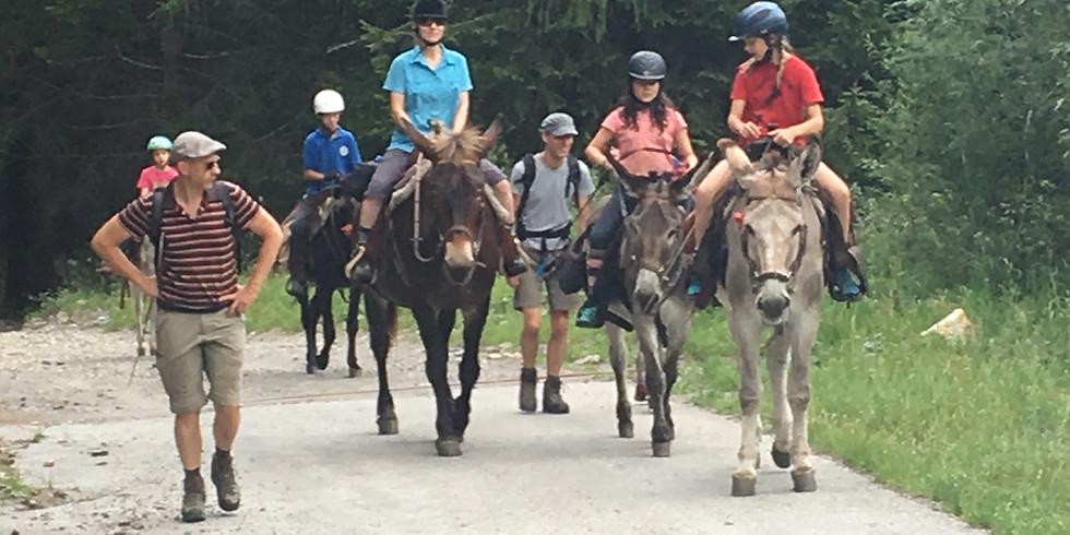 Una settimana di trekking per famiglie > 22.-27.7.2019