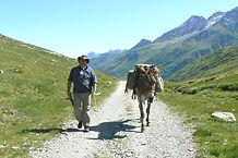 Bigler&Partner thematische Trekking