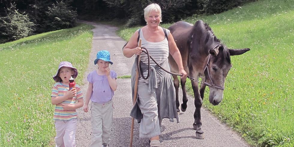 Auffahrt: Erlebnisbauernhof mit Eseleien > 10.05. - 13.05.18