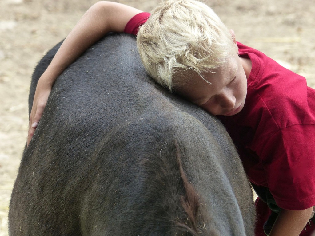 SOMARELLI Interaktion mit Tieren