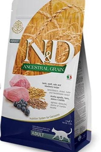"N&D ANCESTRAL GRAIN – מזון לחתול בוגר – כבש, אוכמניות ודגנים 5 ק""ג"