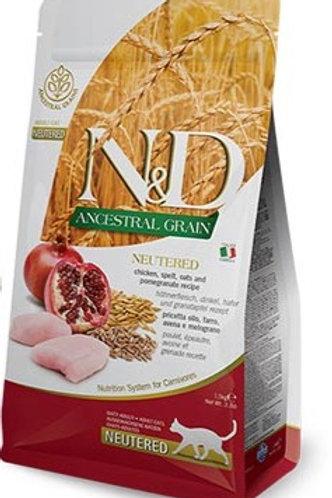 N&D ANCESTRAL GRAIN – מזון לחתול מסורס/מעוקר– עוף, רימון ודגנים