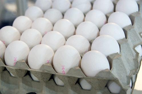 Shell Eggs
