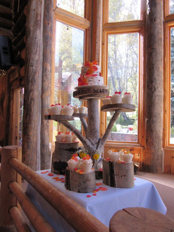 Wedding cake and cupcakes on our Aspen tree stand_IMG_1805_1024