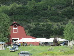 Lawn canopies for the Elks club picnic
