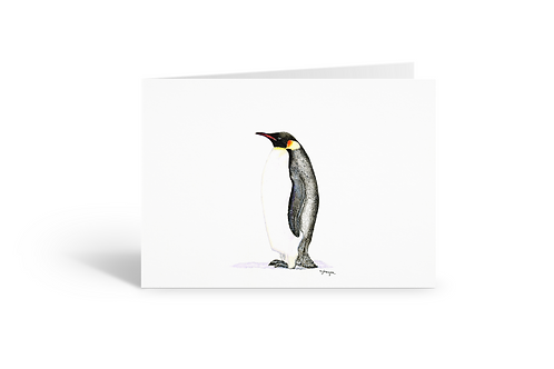 Penguin greeting card birthday card thank you card Gateway Art Sales Abu Dhabi Dubai UAE
