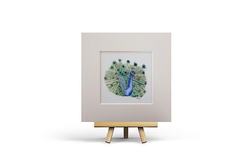 peacock giclee print square with mount easel green turquoise blue Gateway Art Sales Abu Dhabi Dubai UAE