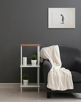 penguin giclee art print picture mounted wall decor wildlife for sale in Abu Dhabi Al Ain Dubai UAE Gateway Art Sales LLC