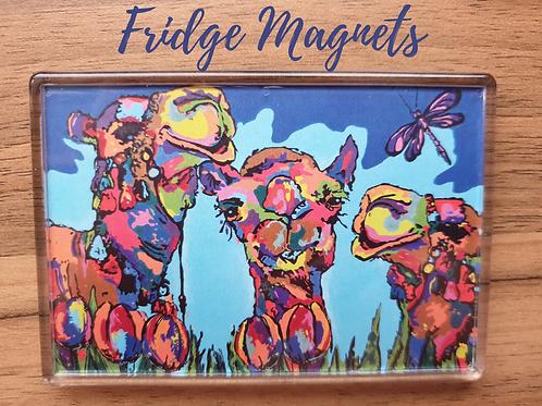 fridge magnet camels souvenir gift blue colourful large quality Gateway Art Sales Abu Dhabi Dubai UAE