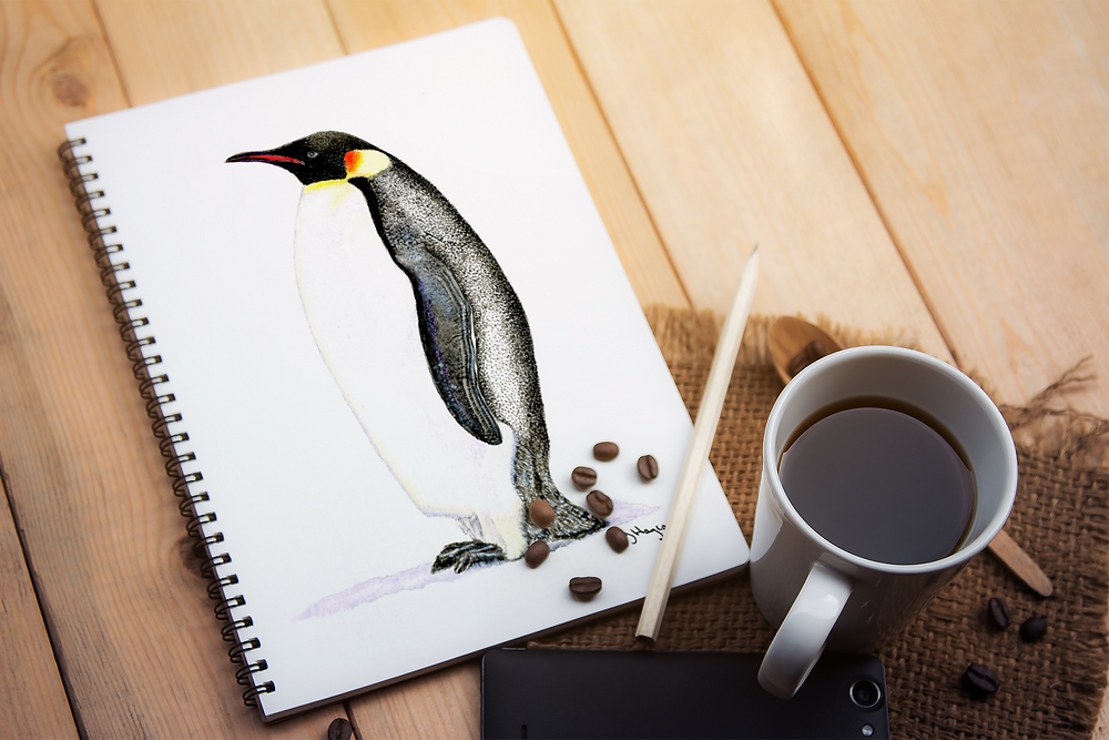 Penguin notebook stationery notebooks A5 spiral bound ring bound notes notetaking back to school gift Abu Dhabi Al Ain Dubai UAE Gateway Art Sales