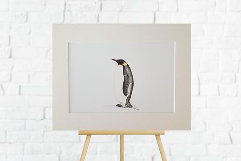 Penguin giclee print mounted artwork picture insitu easel Gateway Art Sales Abu Dhabi Dubai UAE