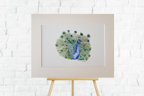 Peacock giclee print mounted insitu easel picture artwork Gateway Art Sales Abu Dhabi Dubai UAE