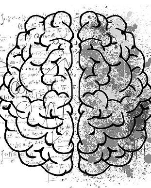 DISC Left Brain Right Psychometric Profi