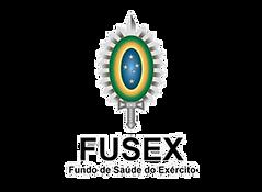 Fusex Logo transparent.png