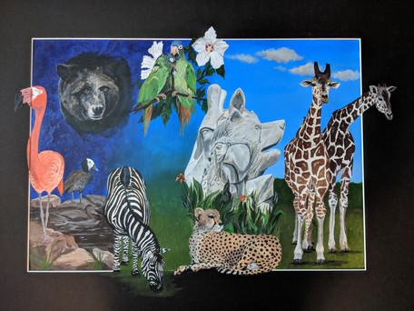 Zoo Montage