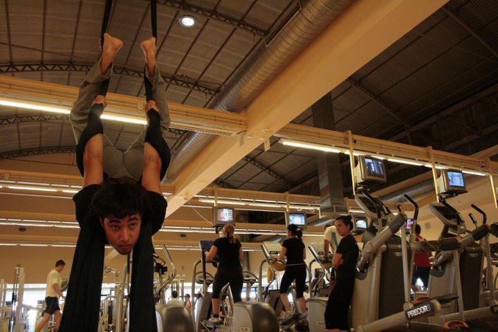 Regular course of aereal acrobatics and organic movement
