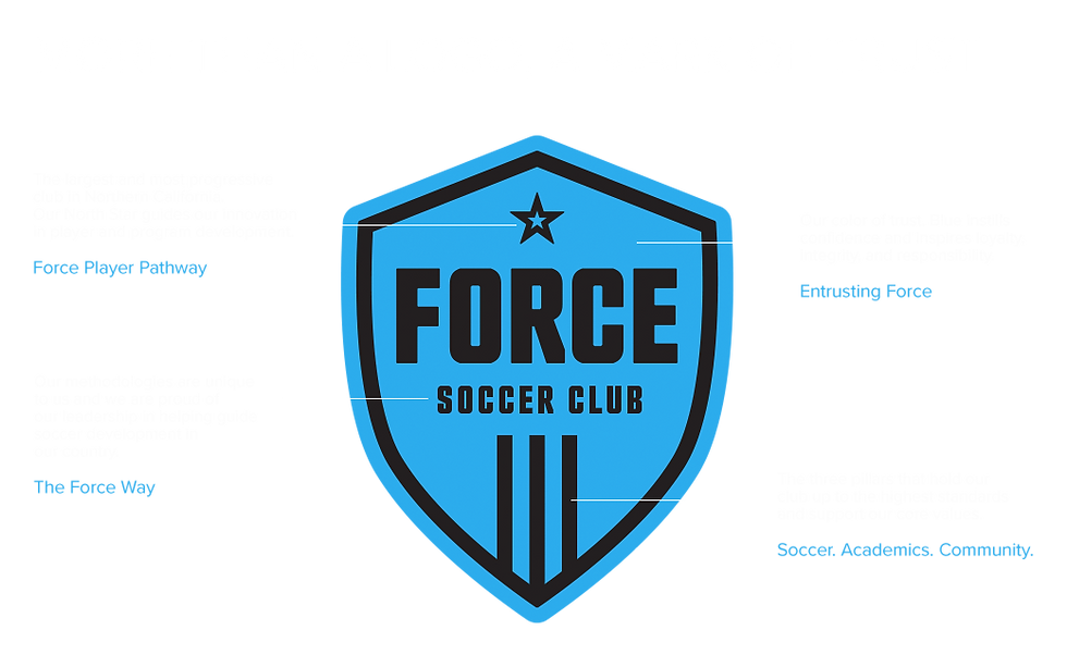 about-force.png