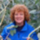 Hilary Collins, Eucalyptus trees, how to grow eucalyptus, hilary collins worcestershire, grafton nursery