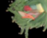 Eucalyptus leaves, grow eucalyptus, eucalyptus colours, eucalyptus autumn colour, autumn colour tree