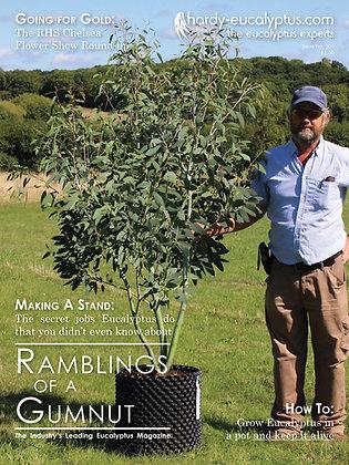 Magazine: Ramblings of a Gumnut