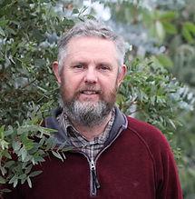Steve Collins Grafton Nursery, Hardy Eucalyptus