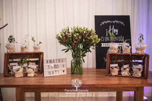 Fotografo de Matrimonio Parcela Queule-5