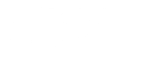 Marca StandUp Coorporativo_com registro_