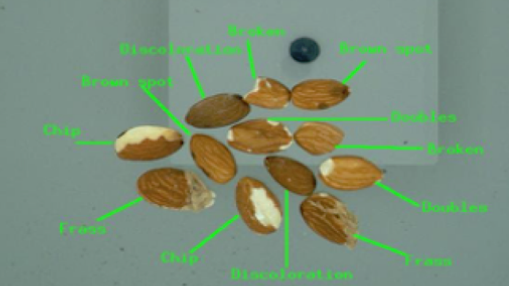 Almond Quality Assessment.png