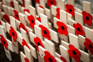 Honouring Remembrance Day