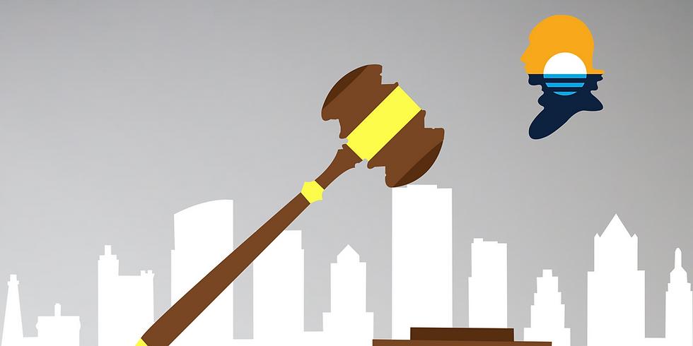 The Judicial Confirmation Process