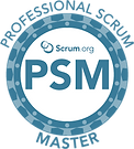 1PSM Logo Agile.png