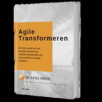 Agile transformeren e-book.png