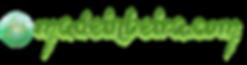 logotipo-v9-comprido.png