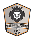 1.TFA Logo.png