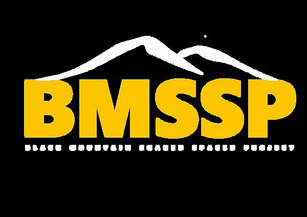 BMSSP LOGO 3.png