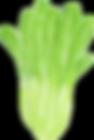 i_TOP_7_壬生菜.png