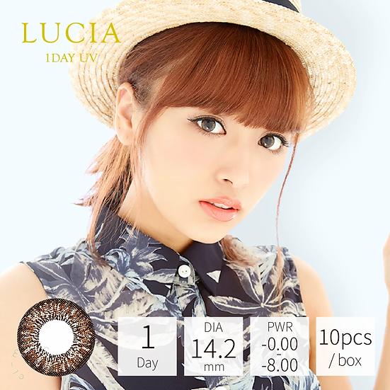 Lucia 1 Day UV Ash Brown 漸層深啡 10片裝