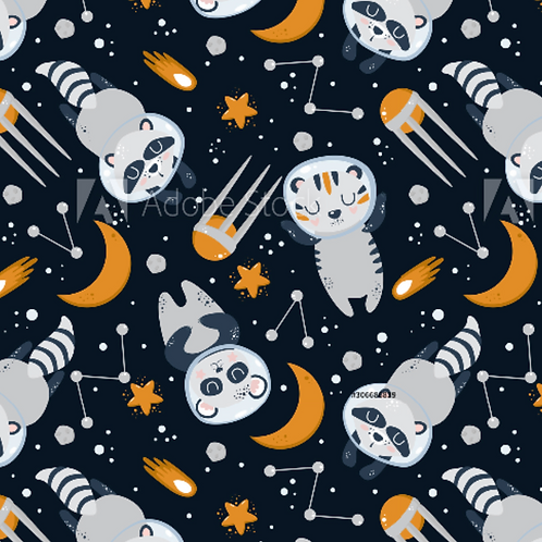 Racoon astronauts - Jersey