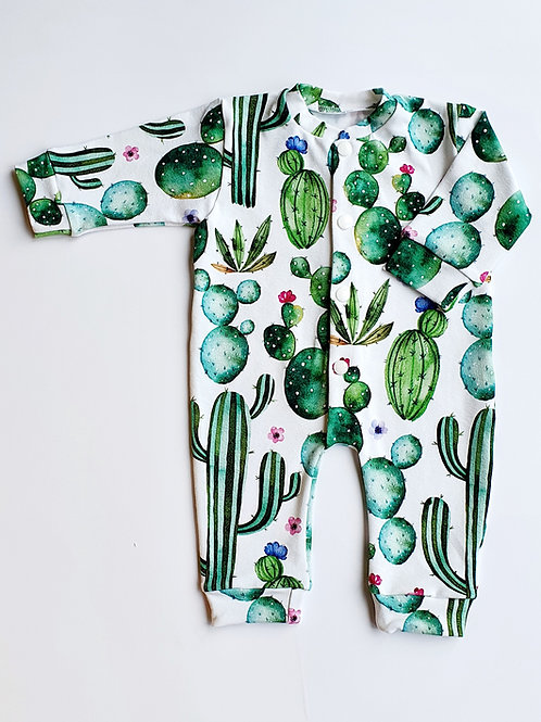 Cacti Baby Grow