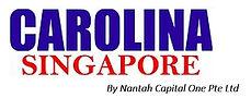 New Carolina SG NC1 logo2.jpg
