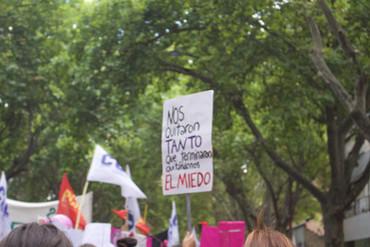 FEMINISMOS E DEMOCRACIA: ENTREVISTA DE FLAVIA FREIDENBERG A MARIANA CAMINOTTI
